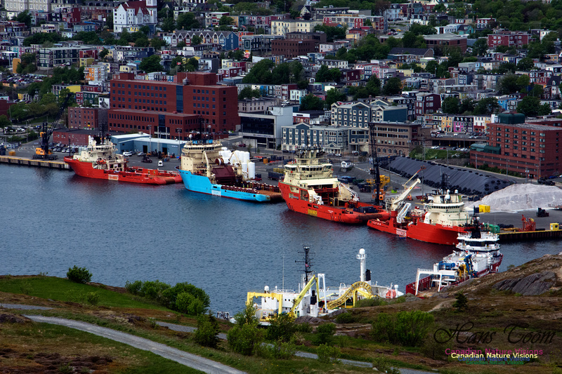 St. John's, Newfoundland and Labrador