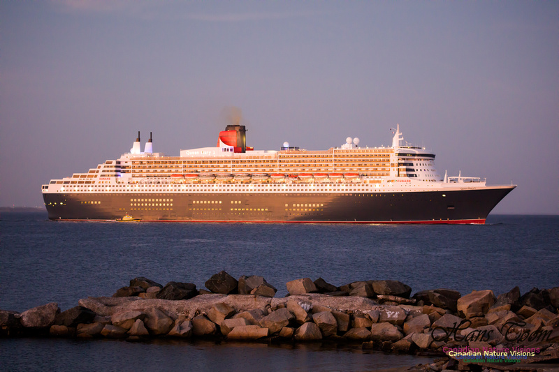 Queen Mary 2 26