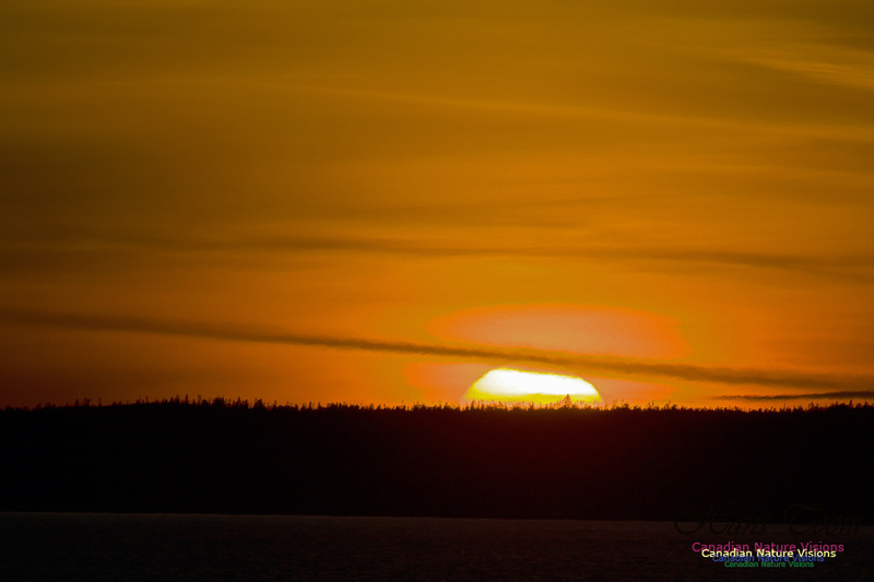 Peggy's Cove Sunset 3