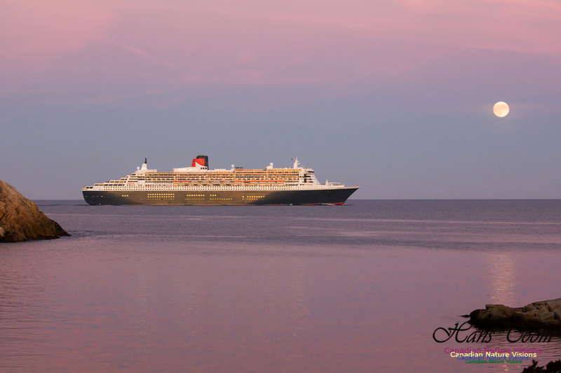 Queen Mary 2 23