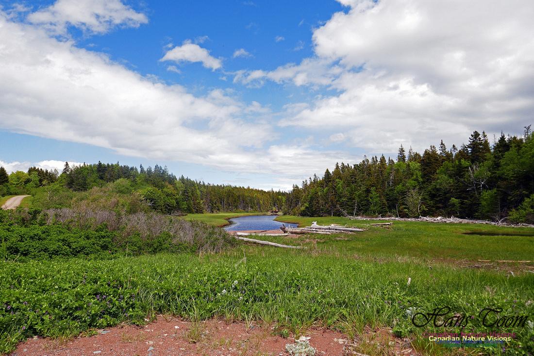 Cape Chignecto Provincial Park 2
