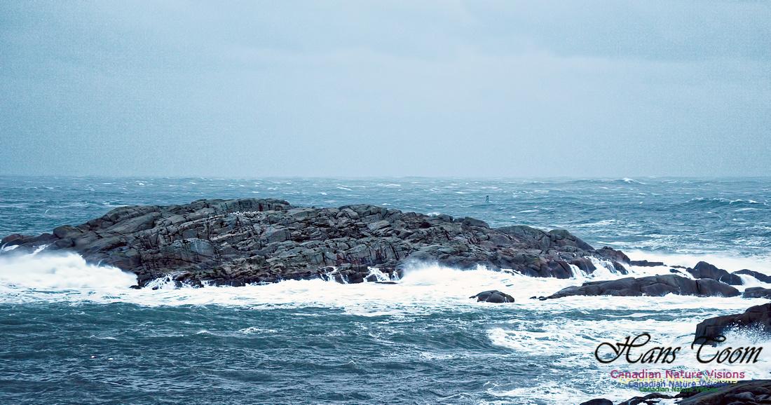 Jeffries Island 1