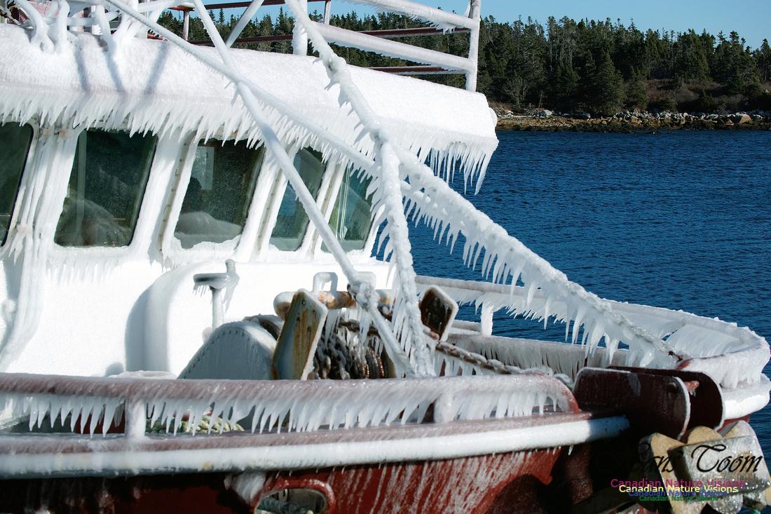 Frozen Fishboat 3