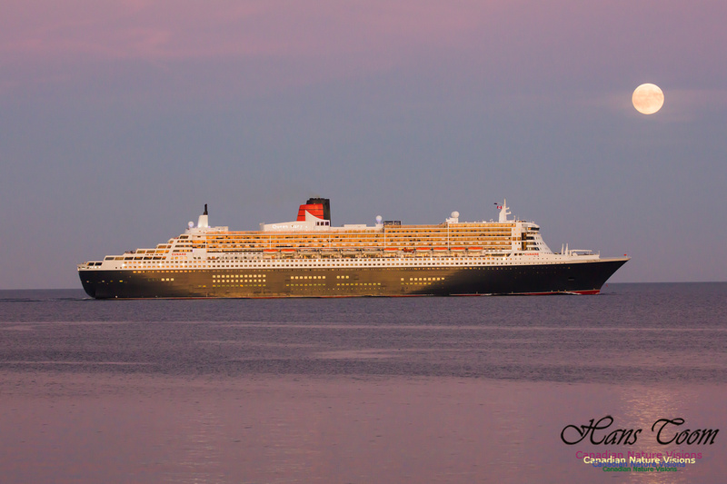 Queen Mary 2 21