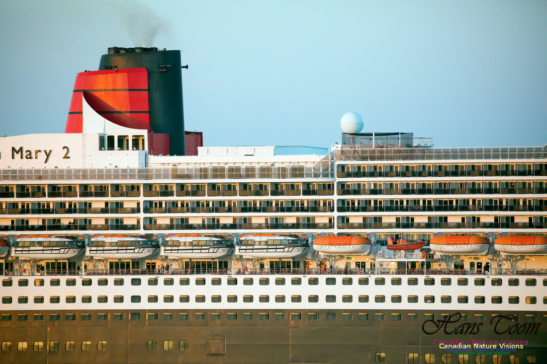 Queen Mary 2 9