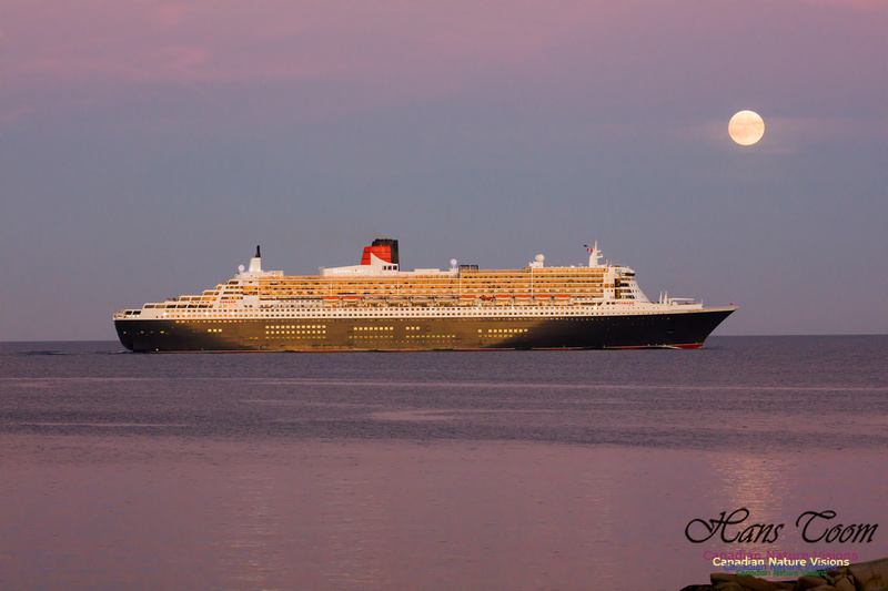 Queen Mary 2 20