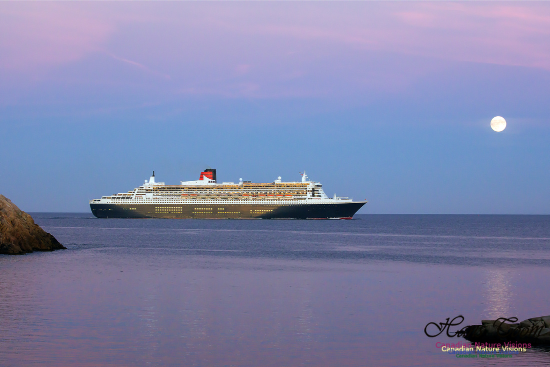 Queen Mary 2 28