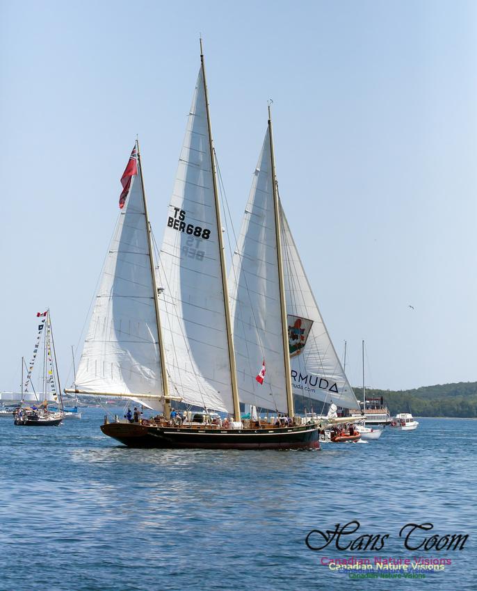 Spirit of Bermuda 6