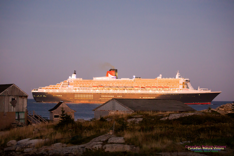 Queen Mary 2 25