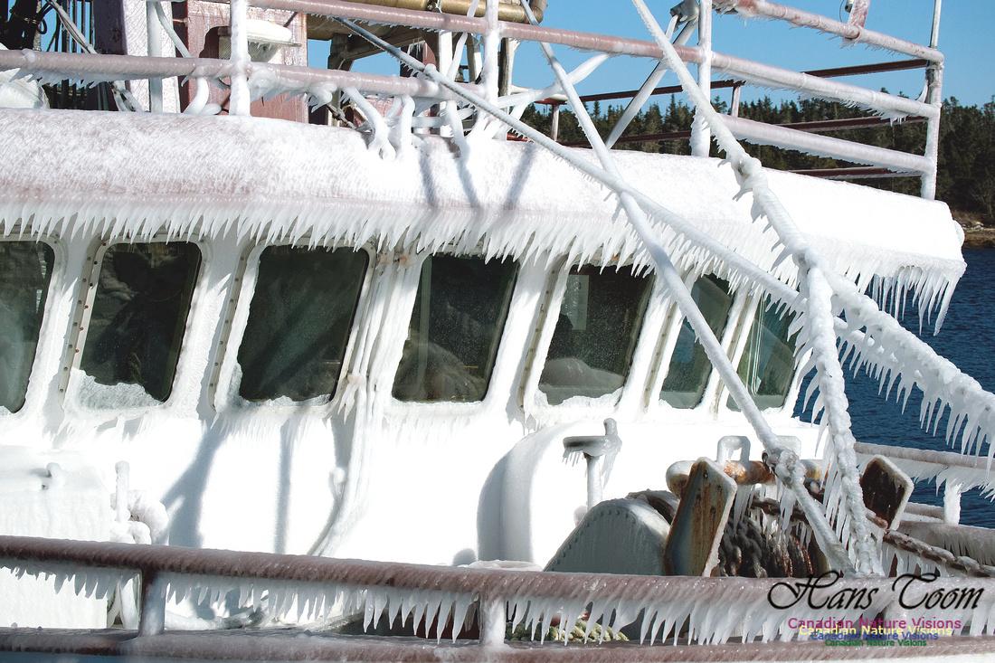 Frozen Fishboat 2
